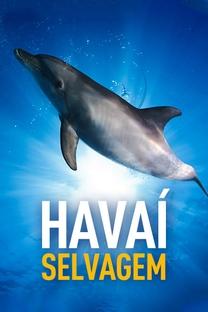 Havaí Selvagem - Poster / Capa / Cartaz - Oficial 1