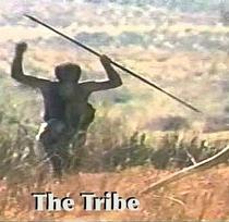 A Tribo - Poster / Capa / Cartaz - Oficial 1