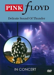 Pink Floyd: Delicate Sound Of Thunder - Poster / Capa / Cartaz - Oficial 1