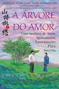 A Árvore do Amor - Poster / Capa / Cartaz - Oficial 5