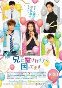 Ani ni Aisaresugite Komattemasu - Poster / Capa / Cartaz - Oficial 2