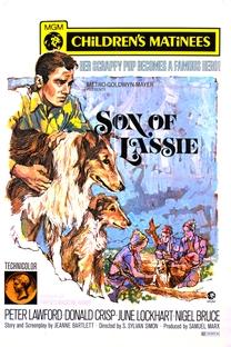 O Filho de Lassie - Poster / Capa / Cartaz - Oficial 2