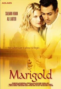 Marigold: Uma Aventura na Índia - Poster / Capa / Cartaz - Oficial 1