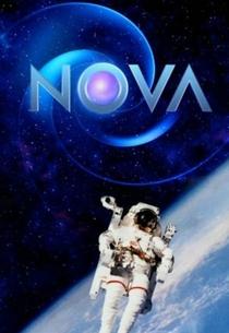 NOVA - 42ª Temporada - Poster / Capa / Cartaz - Oficial 1