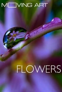Moving Art: Flores - Poster / Capa / Cartaz - Oficial 1