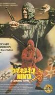 Dragão Ninja - O Combate Final (Ninja Dragon)