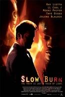O Crime Perfeito (Slow Burn)