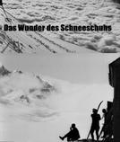 A Maravilha Dos Sapatos De Neve (Das Wunder Des Schneeschuhs)