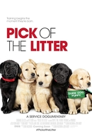 A Escolha da Ninhada (Pick of the Litter)