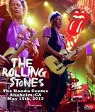 Rolling Stones - Anaheim 2013 (Rolling Stones - Anaheim 2013)
