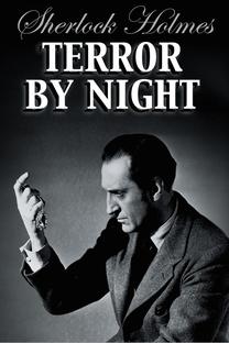 Noite Tenebrosa - Poster / Capa / Cartaz - Oficial 7