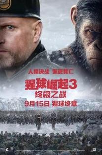 Planeta dos Macacos: A Guerra - Poster / Capa / Cartaz - Oficial 16