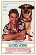 Curso de Verão (Summer School)