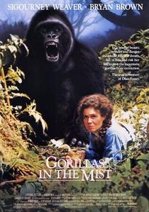 Nas Montanhas dos Gorilas - Poster / Capa / Cartaz - Oficial 1