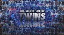 The Secret Life of Twins - Poster / Capa / Cartaz - Oficial 1
