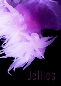 Jellies - Poster / Capa / Cartaz - Oficial 1