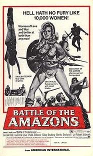 Amazonas do Karatê - Poster / Capa / Cartaz - Oficial 3