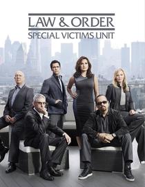 Law & Order: Special Victims Unit (14ª temporada) - Poster / Capa / Cartaz - Oficial 1