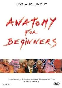 Anatomia para Iniciantes (1ª Temporada) - Poster / Capa / Cartaz - Oficial 1