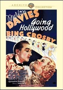 Delírios de Hollywood - Poster / Capa / Cartaz - Oficial 3