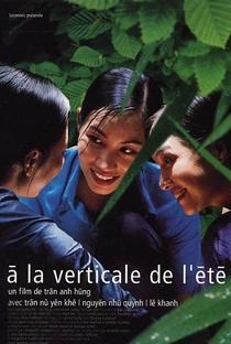 As Luzes de um Verão - Poster / Capa / Cartaz - Oficial 1