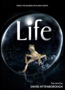 BBC - Vida