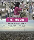 O Verdadeiro Custo (The True Cost)