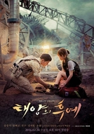 Descendants of the Sun (Taeyangui Hooye)