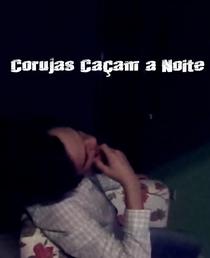 Corujas Caçam à Noite - Poster / Capa / Cartaz - Oficial 3