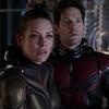 Paul Rudd e Evangeline Lilly falam sobre filmes de super-heróis