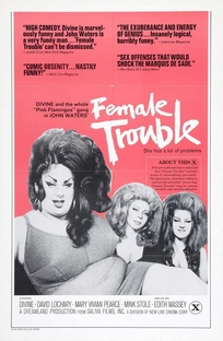 Problemas Femininos - Poster / Capa / Cartaz - Oficial 1