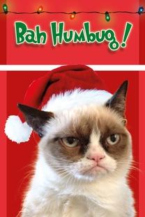 Grumpy Cat's Worst Christmas Ever - Poster / Capa / Cartaz - Oficial 1