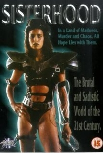 Guerreiras do Universo - Poster / Capa / Cartaz - Oficial 2