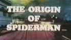 Homem Aranha 1967 (Abertura / BR)