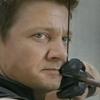 Vingadores: Jeremy Renner desejou a morte do Gavião Arqueiro