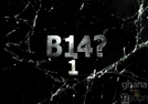 b14? 1  (b14? 1)