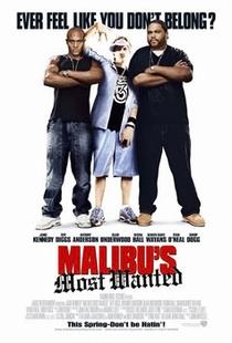 Seqüestro em Malibu - Poster / Capa / Cartaz - Oficial 2