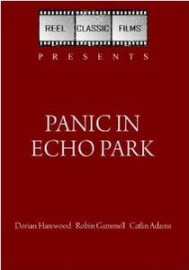 Pânico no Parque - Poster / Capa / Cartaz - Oficial 2