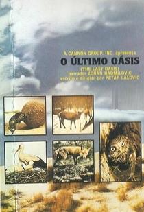 O Último Oásis - Poster / Capa / Cartaz - Oficial 1