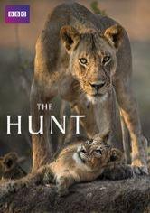 The Hunt - Poster / Capa / Cartaz - Oficial 3