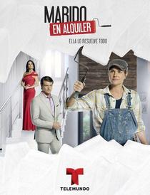 Marido de Aluguel - Poster / Capa / Cartaz - Oficial 1