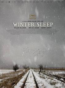 Sono de Inverno - Poster / Capa / Cartaz - Oficial 2