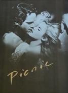 Picnic (Picnic)