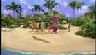 Barney e seus amigos (Barney & Friends Brazilian Portuguese)
