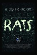 Ratos (Rats)