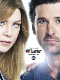 Grey's Anatomy (9ª Temporada) - Poster / Capa / Cartaz - Oficial 5