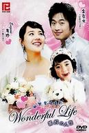 Wonderful Life (Wondeopool Laipeu)