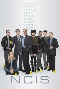 NCIS: Investigações Criminais (14ª Temporada) - Poster / Capa / Cartaz - Oficial 1