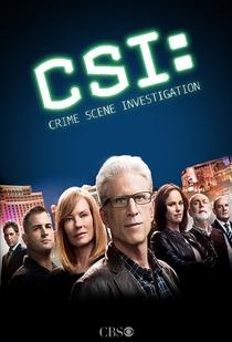 CSI: Investigação Criminal  (15ª Temporada) - Poster / Capa / Cartaz - Oficial 2