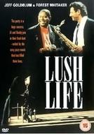 Vida Boêmia (lush Life)